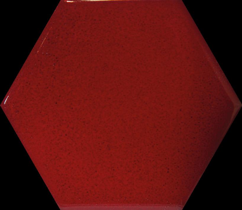 Rouge hermes carrelages pierre versace - Piscine carrelage rouge fort de france ...